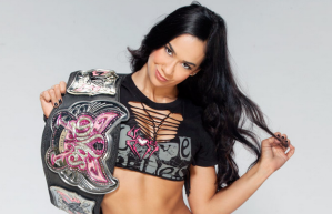 aj-lee-injured